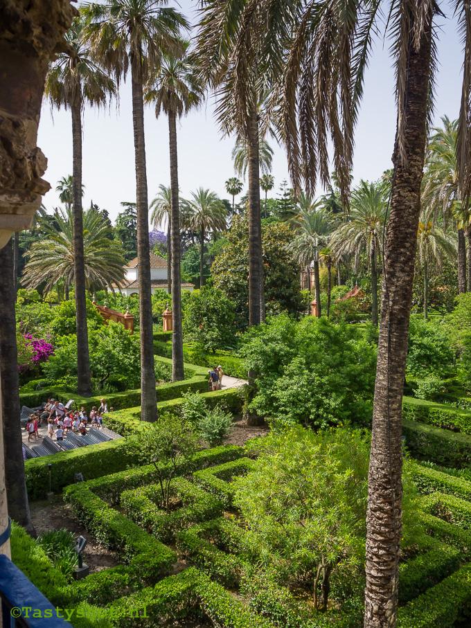 Sevilla, Photography: © Gitta for www.tastyshot.nl